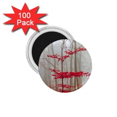 Magic Forest In Red And White 1 75  Magnets (100 Pack)