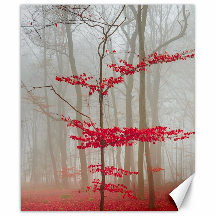 Magic forest in red and white Canvas 8  x 10