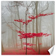 Magic forest in red and white Canvas 16  x 16