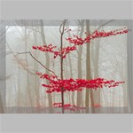 Magic forest in red and white Canvas 18  x 12  18  x 12  x 0.875  Stretched Canvas