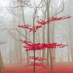 Magic forest in red and white Magic Photo Cubes