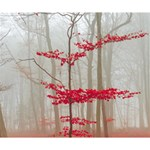 Magic forest in red and white Deluxe Canvas 14  x 11  14  x 11  x 1.5  Stretched Canvas