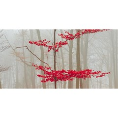 Magic Forest In Red And White You Are Invited 3d Greeting Card (8x4)