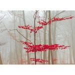 Magic forest in red and white Birthday Cake 3D Greeting Card (7x5) Back