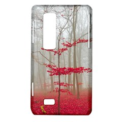 Magic forest in red and white LG Optimus Thrill 4G P925