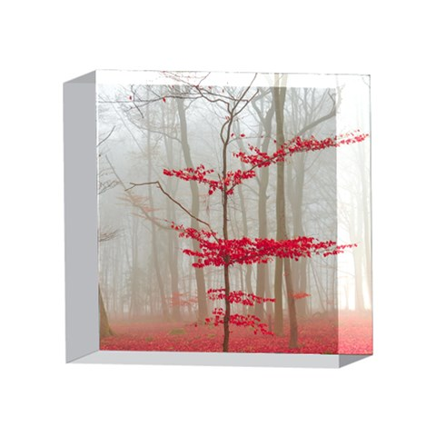 Magic forest in red and white 4 x 4  Acrylic Photo Blocks