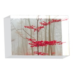 Magic forest in red and white 4 x 6  Acrylic Photo Blocks