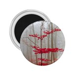 Magic Forest In Red And White 2.25  Magnets Front