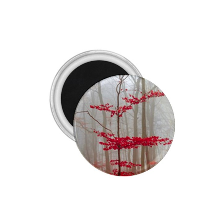 Magic Forest In Red And White 1.75  Magnets