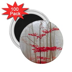 Magic Forest In Red And White 2 25  Magnets (100 Pack)