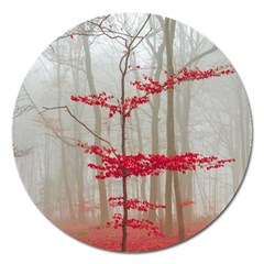 Magic Forest In Red And White Magnet 5  (Round)