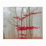 Magic Forest In Red And White Small Glasses Cloth Front