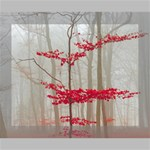Magic Forest In Red And White Canvas 10  x 8  10  x 8  x 0.875  Stretched Canvas