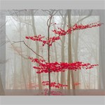Magic Forest In Red And White Canvas 14  x 11  14  x 11  x 0.875  Stretched Canvas