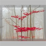 Magic Forest In Red And White Canvas 16  x 12  16  x 12  x 0.875  Stretched Canvas