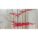 Magic Forest In Red And White Magic Photo Cubes Long Side 1