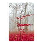 Magic Forest In Red And White Shower Curtain 48  x 72  (Small)  48 x72 Curtain