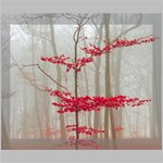 Magic Forest In Red And White Deluxe Canvas 20  x 16   20  x 16  x 1.5  Stretched Canvas