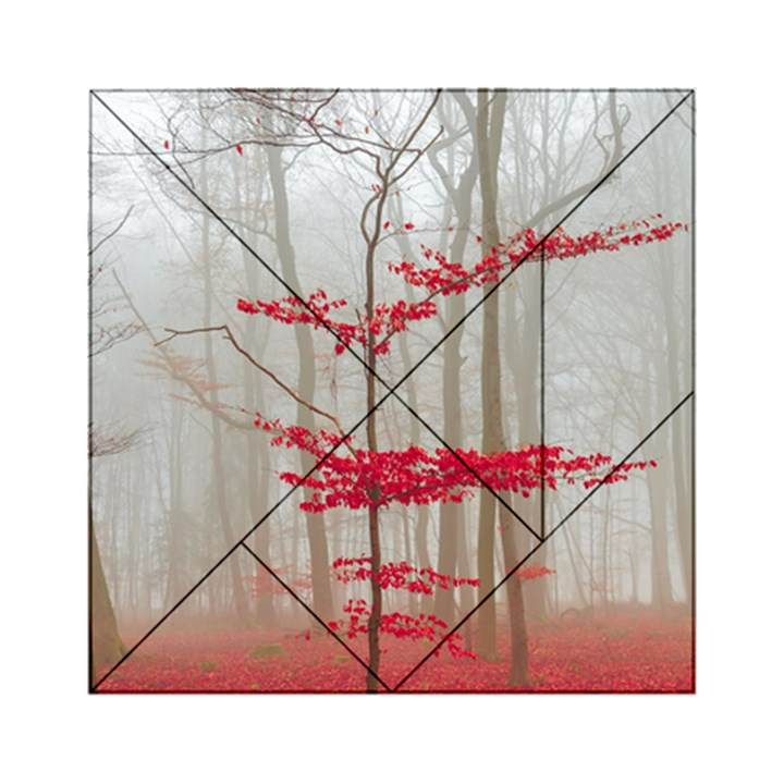 Magic Forest In Red And White Acrylic Tangram Puzzle (6  x 6 )