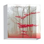 Magic Forest In Red And White 5  x 5  Acrylic Photo Blocks Front