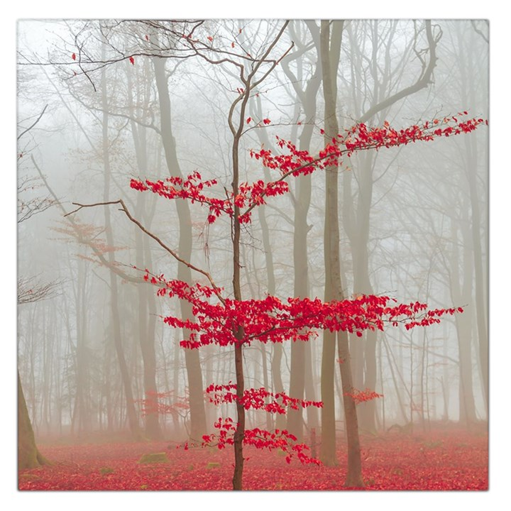 Magic Forest In Red And White Large Satin Scarf (Square)