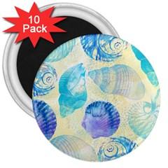 Seashells 3  Magnets (10 Pack)