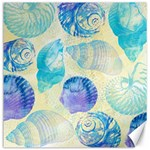 Seashells Canvas 12  x 12   12 x12 Canvas - 1
