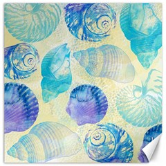 Seashells Canvas 16  x 16
