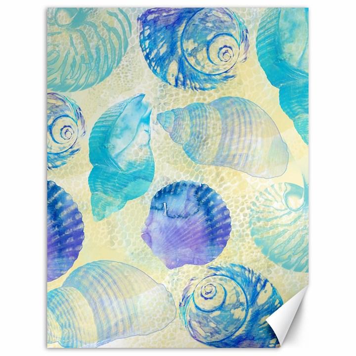 Seashells Canvas 18  x 24
