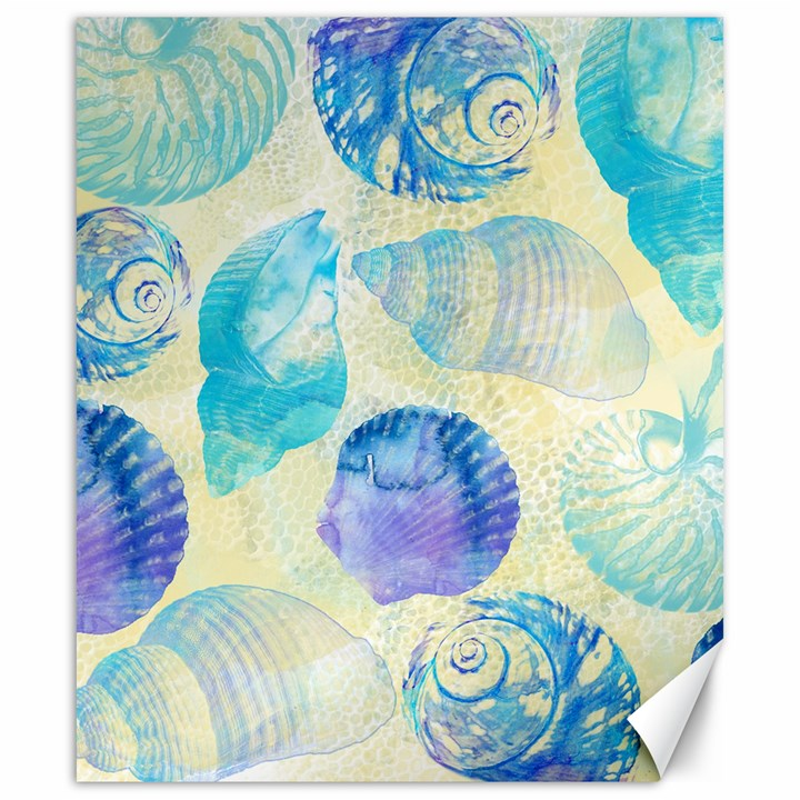 Seashells Canvas 20  x 24