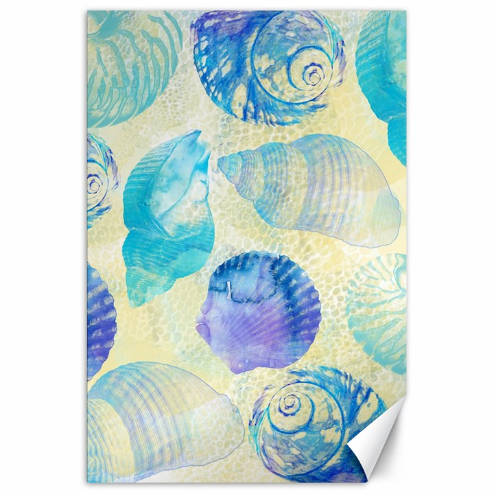 Seashells Canvas 20  x 30