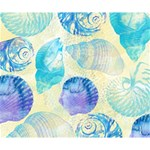 Seashells Deluxe Canvas 14  x 11  14  x 11  x 1.5  Stretched Canvas