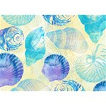 Seashells BOY 3D Greeting Card (7x5) Back