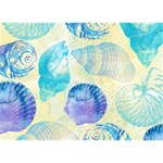 Seashells Circle Bottom 3D Greeting Card (7x5) Back