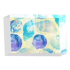 Seashells 4 x 6  Acrylic Photo Blocks