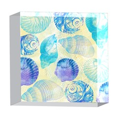 Seashells 5  x 5  Acrylic Photo Blocks