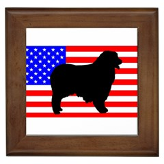 Australian Shepherd Silo Usa Flag Framed Tiles