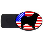 Australian Shepherd Silo Usa Flag USB Flash Drive Oval (1 GB)  Front