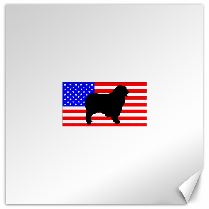 Australian Shepherd Silo Usa Flag Canvas 16  x 16