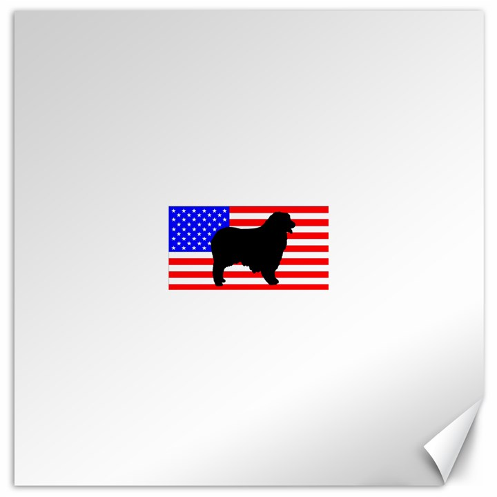Australian Shepherd Silo Usa Flag Canvas 20  x 20