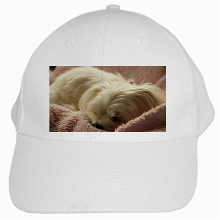 Maltese Sleeping White Cap