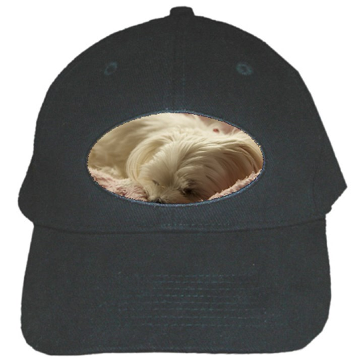 Maltese Sleeping Black Cap