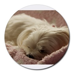 Maltese Sleeping Round Mousepads