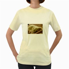 Maltese Sleeping Women s Yellow T-Shirt