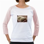 Maltese Sleeping Girly Raglans Front