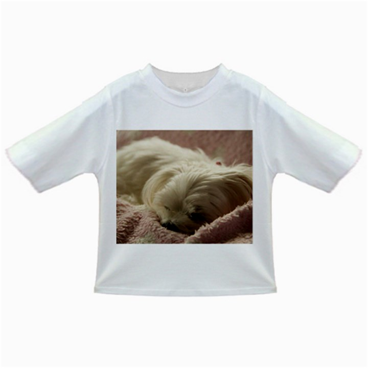 Maltese Sleeping Infant/Toddler T-Shirts
