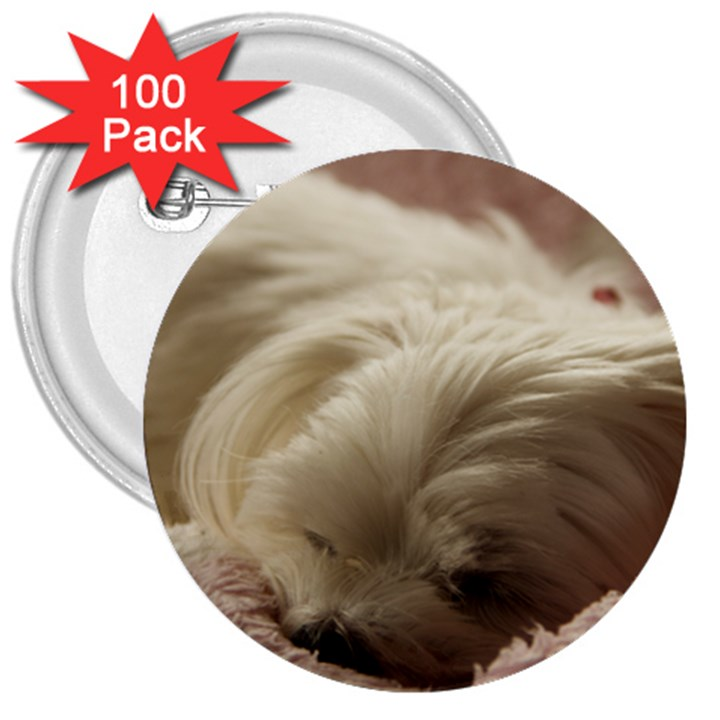 Maltese Sleeping 3  Buttons (100 pack)