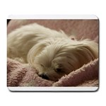 Maltese Sleeping Large Mousepads Front