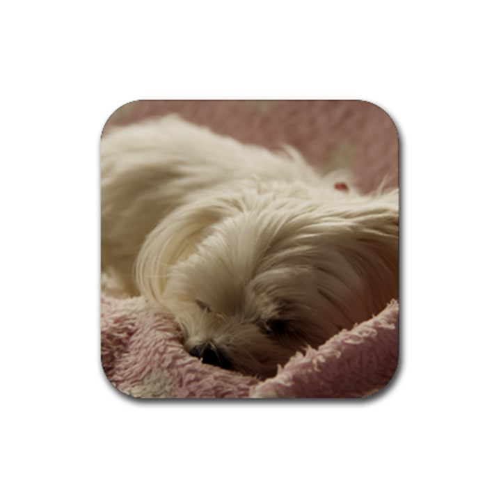 Maltese Sleeping Rubber Square Coaster (4 pack)