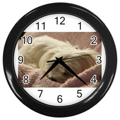 Maltese Sleeping Wall Clocks (Black)